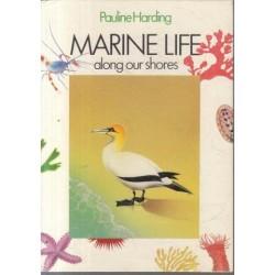 Marine Life along our Shores