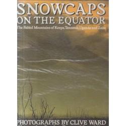 Snowcaps at the Equator