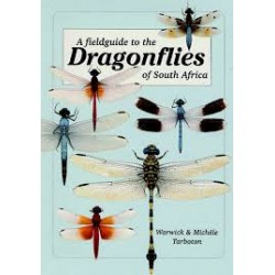 A Fieldguide To The Damselflies Of South Africa