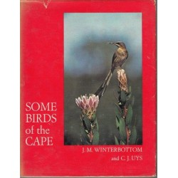 Some Birds of the Cape