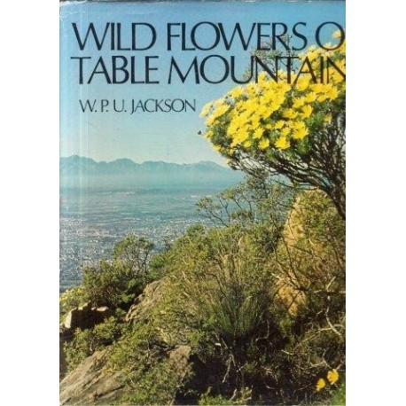 Wild Flowers of Table Mountain