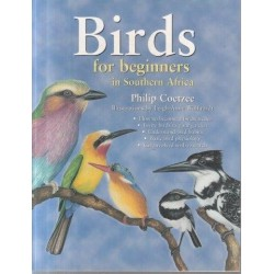 Birds for Beginners in Southern Africa