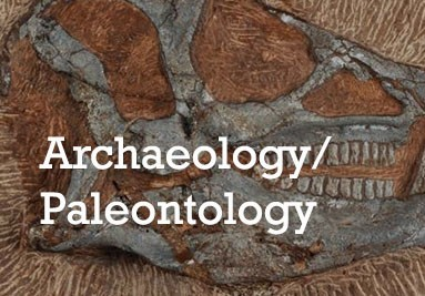 Archaeology & Paleontology